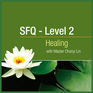 Spring Forest Qigong level 2 for healing