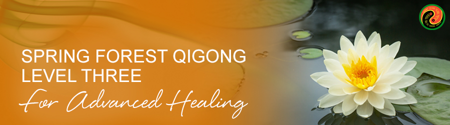 Spring Forest Qigong for Advanced Energy Development and Healing