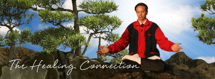 Spring Forest Qigong - The Healing Connection
