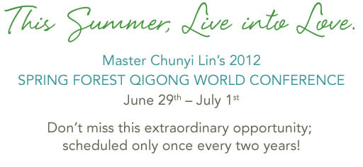 Spring Forest Qigong - World Conference - Summer 2012