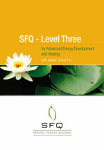 Level Three for Advanced Energy Development and Healing Manual