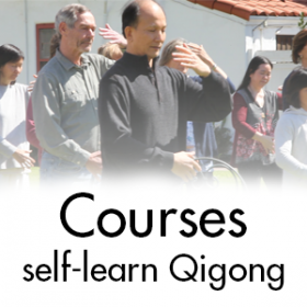 sfq-learning-courses-300x300